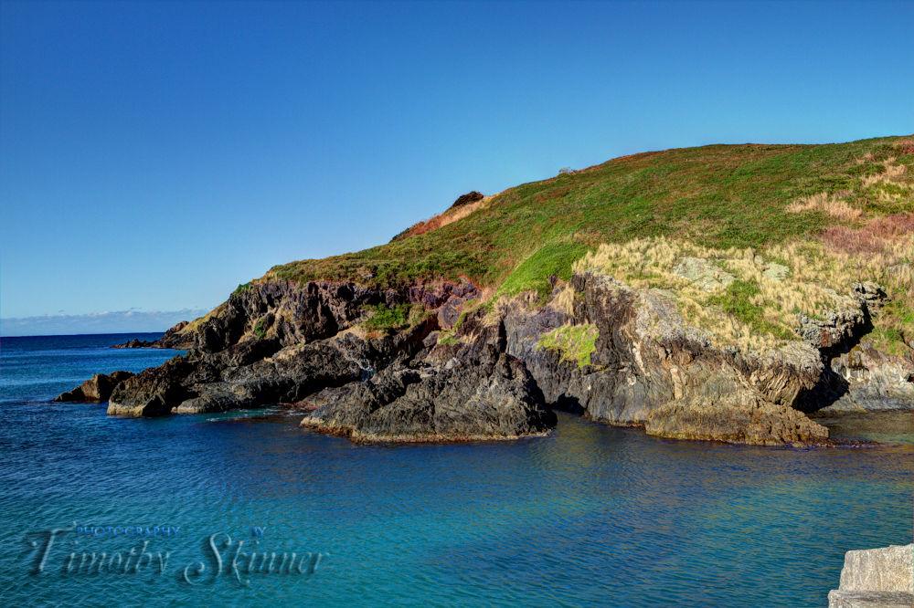 Muttonbird Island by Timothy Skinner