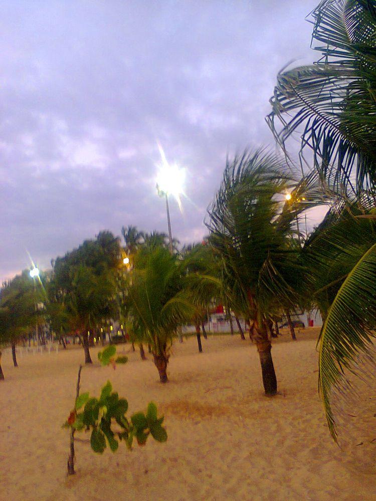 Foto1142 by sandramarahandradepinto