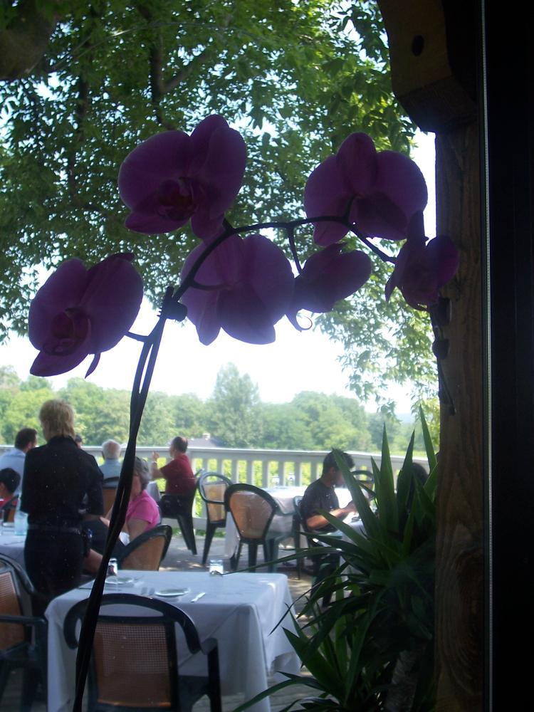 Niagara on the Lake by Cathy Collins