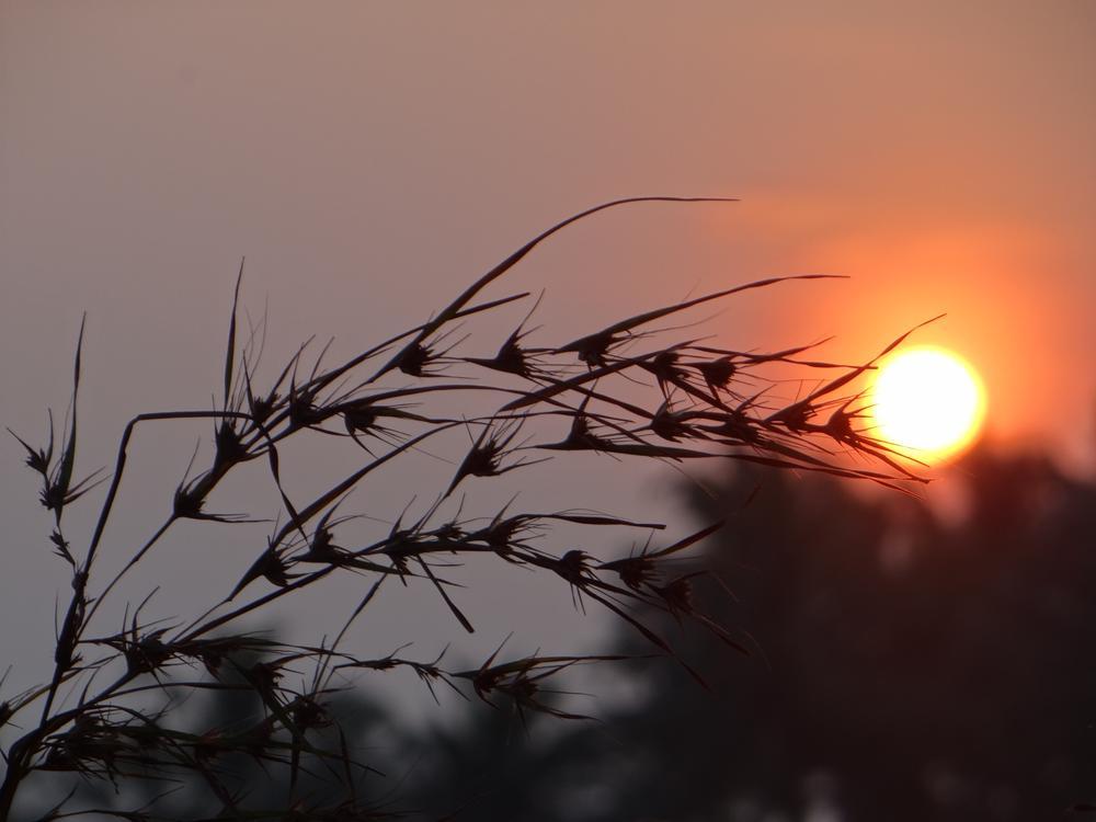 )))))) by Dhiraj Agrawal