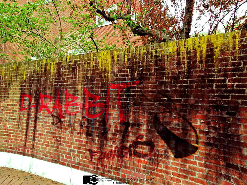 Graffiti explains more than a vision  by Dilan Henricus