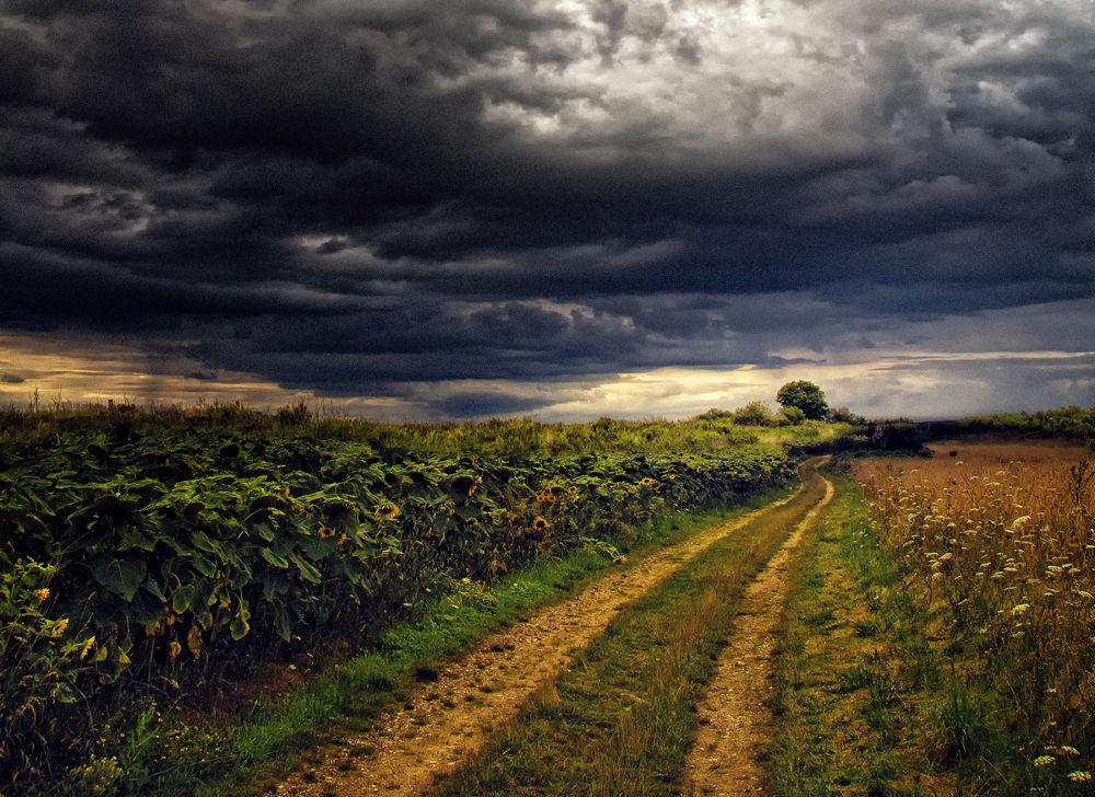 Rain is coming by klepherone