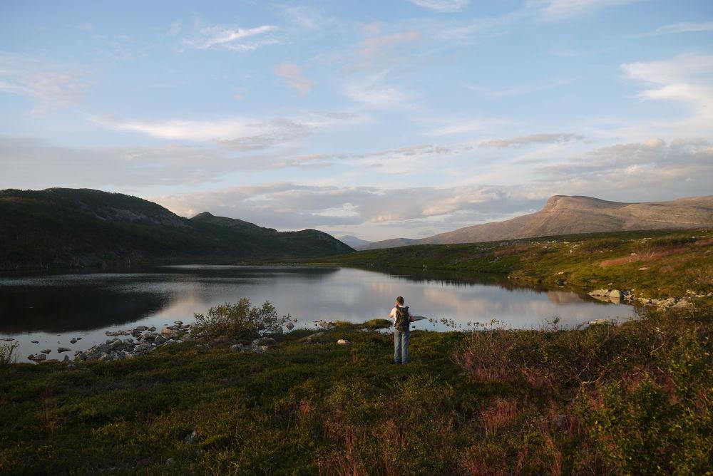 Photo in Nature #smalfjord #tana