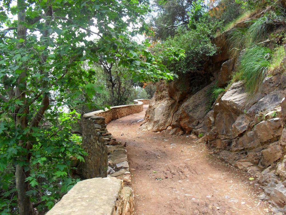 Beauty of Algeria by capista