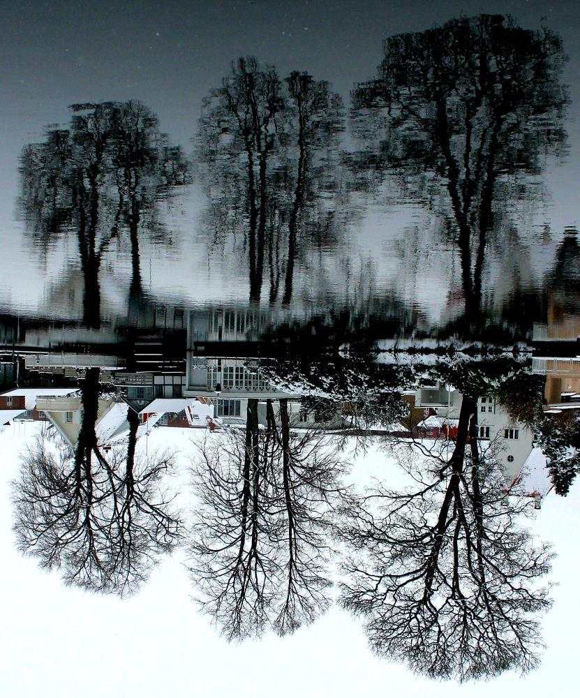 Last winter by MilleMarlene