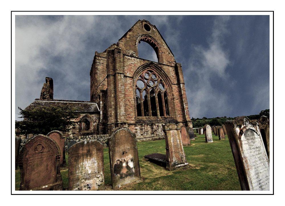 abbey by danita