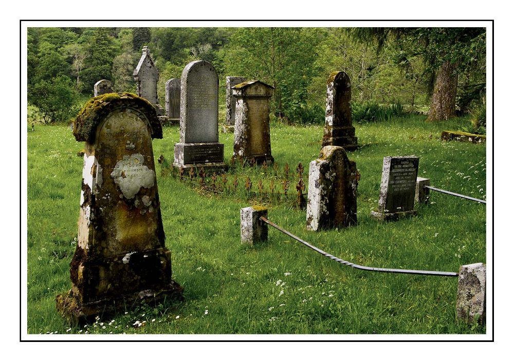 graves by danita