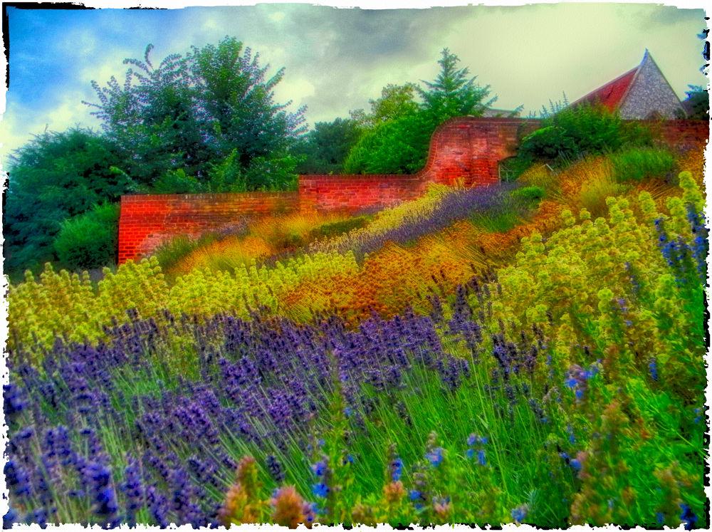 Caversham court Gardens by TomPiotrowski