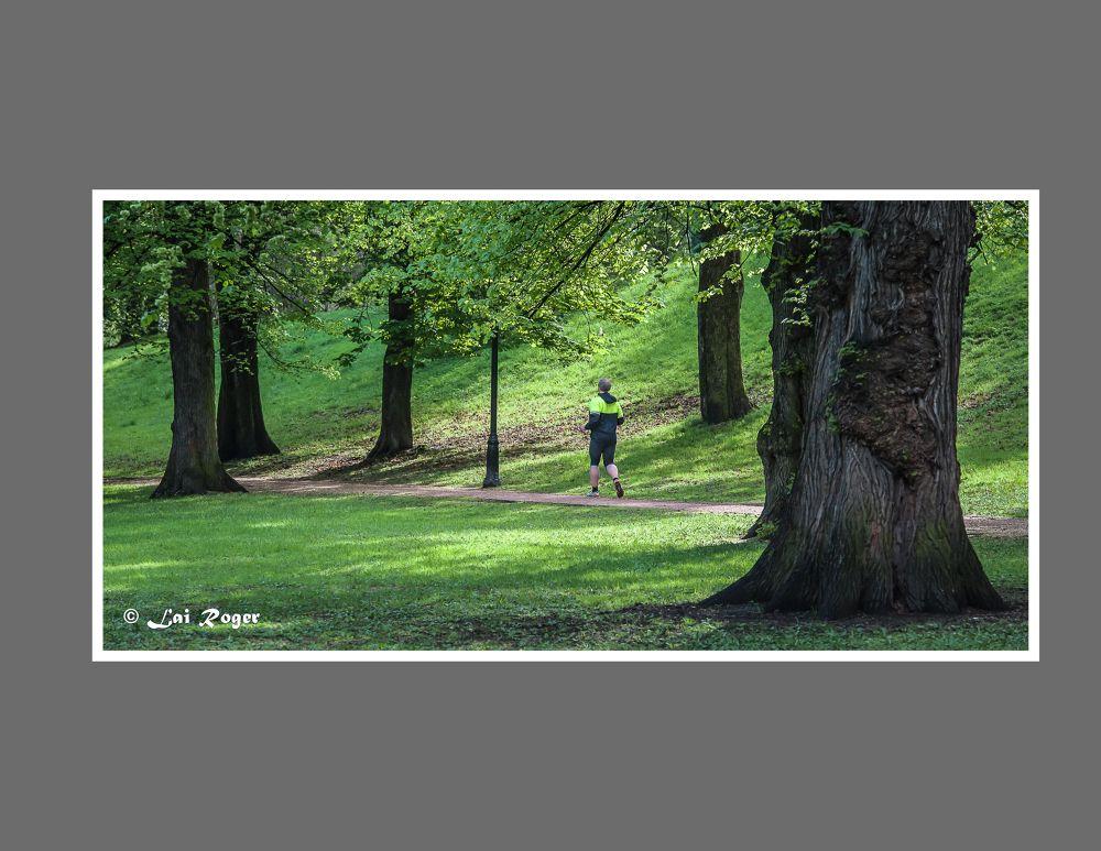347. Running in Nature.jpg by RogerLai