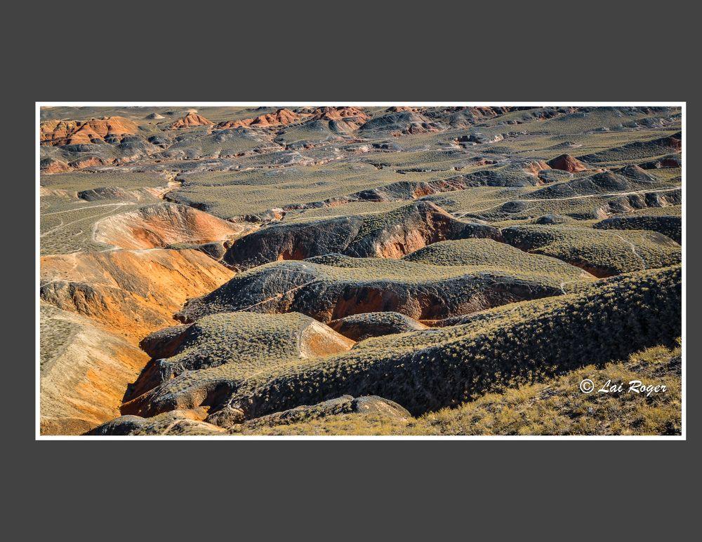 Landscape_603 by RogerLai