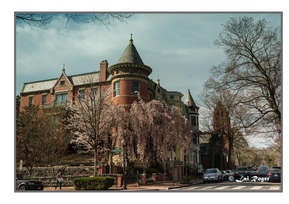 Peaceful Georgetown, DC by RogerLai