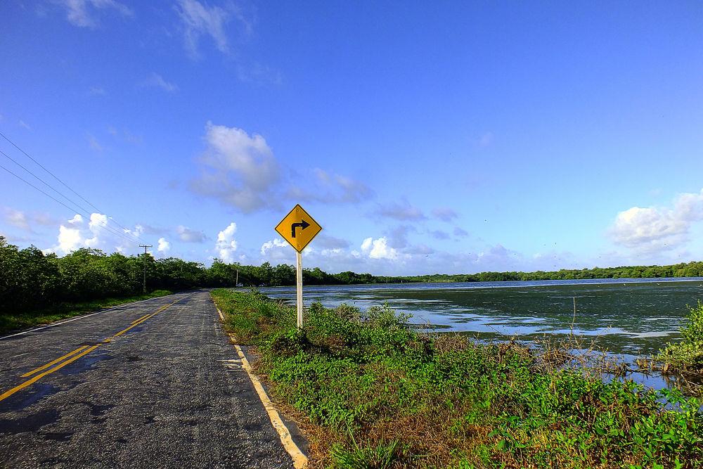 Estrada para a praia de Ajuruteua, Bragança, Pará, Brasil. by Rui Oliveira Santos