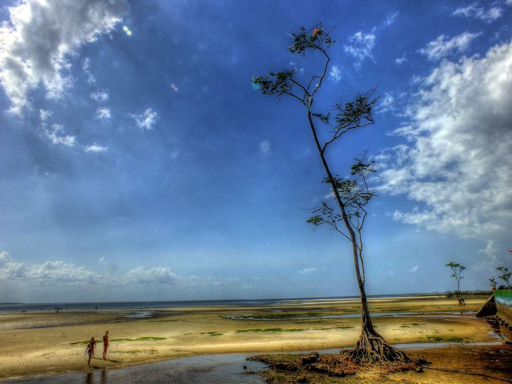 Vila de Beja, Pará, Brasil, Amazônia. by Rui Oliveira Santos
