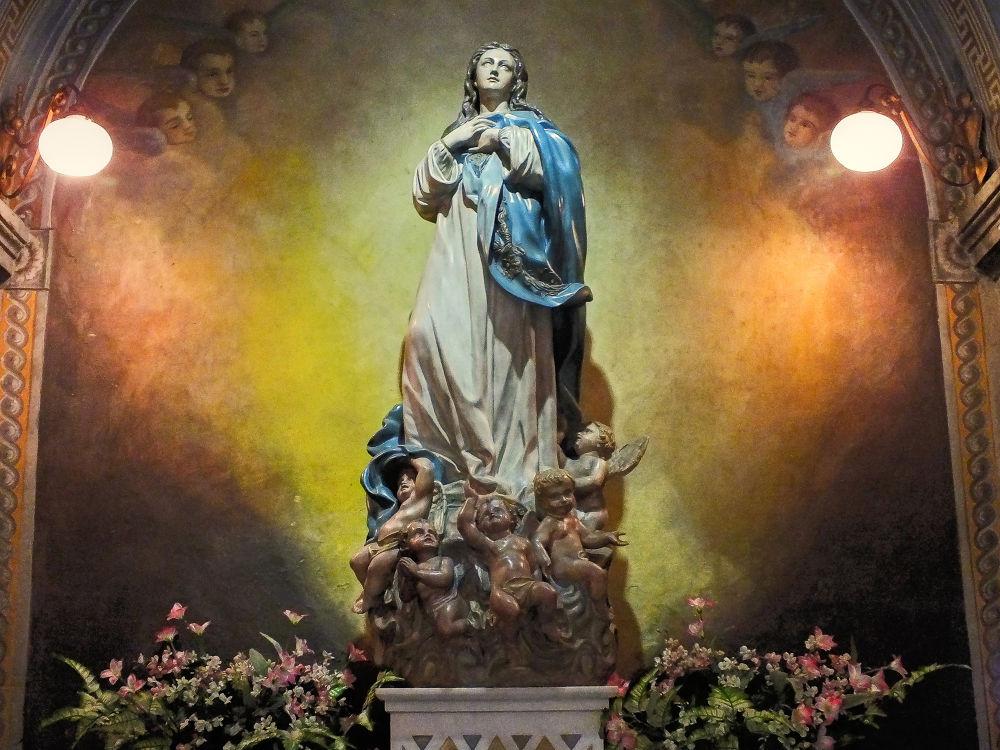Imaculada Nossa Senhora da Conceição by Rui Oliveira Santos
