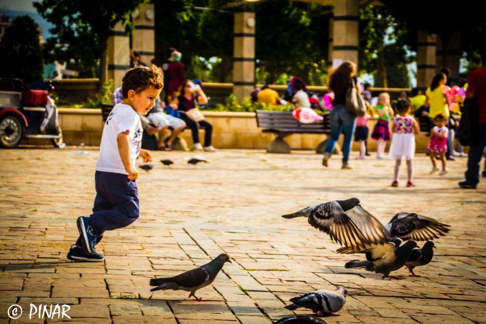 Catching Birds by pinarlerm