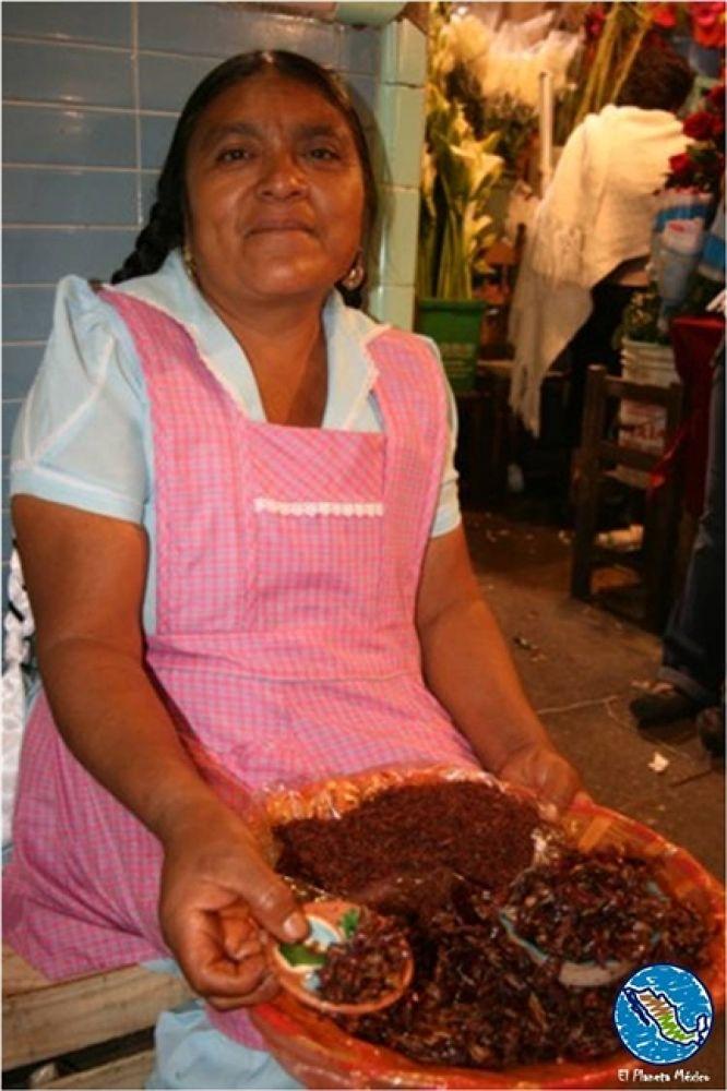 Gastronomy Oaxaca, Mexico. Grasshoppers. by El Planeta México