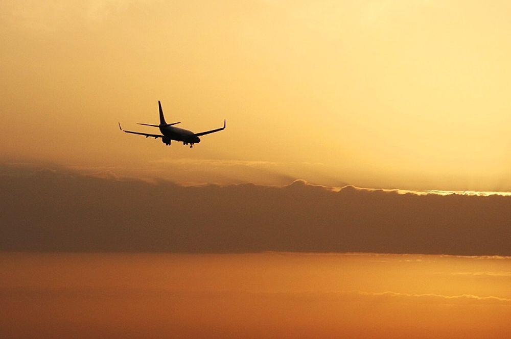 Viagem dourada by Jose Simoes