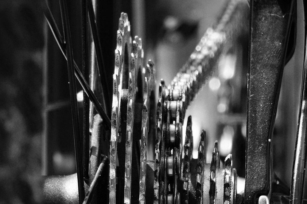 Gears & Chains by Rob van der Griend