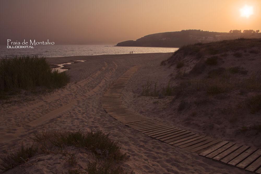 Montalvo Beach by OlloDixital