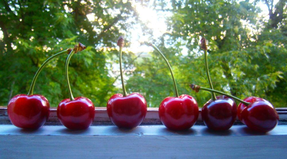 Cherry by Belladonna Lullaby