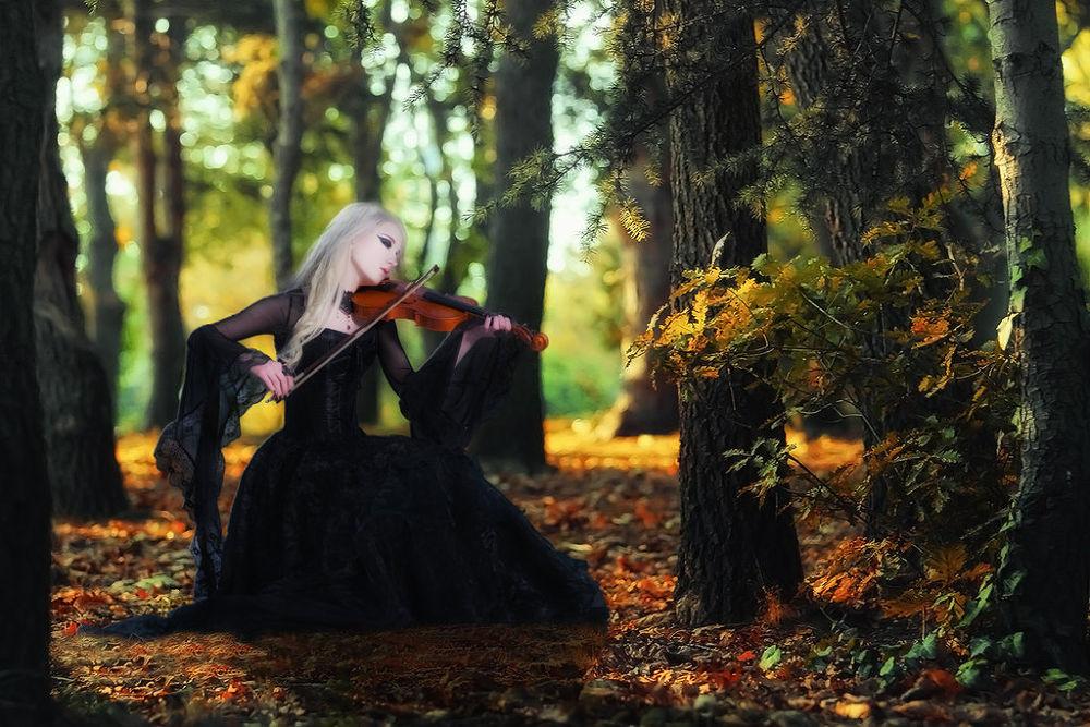 Photo in Random #maruscik #violin #forrest #fall