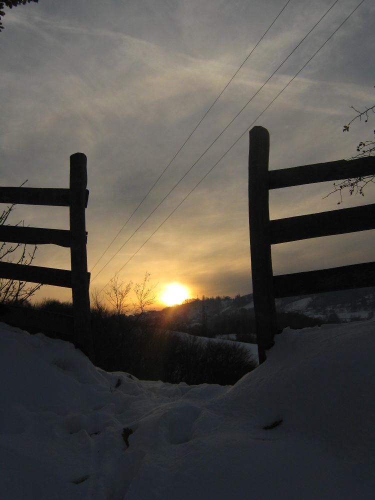 Early winter by Marijana Petrovic