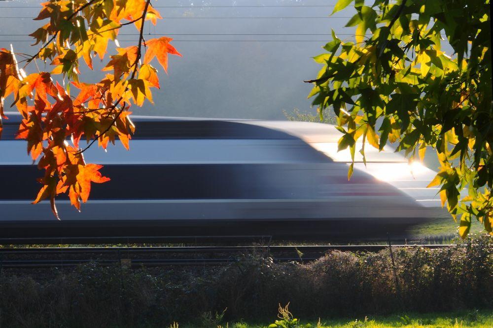 TGV by leotempo