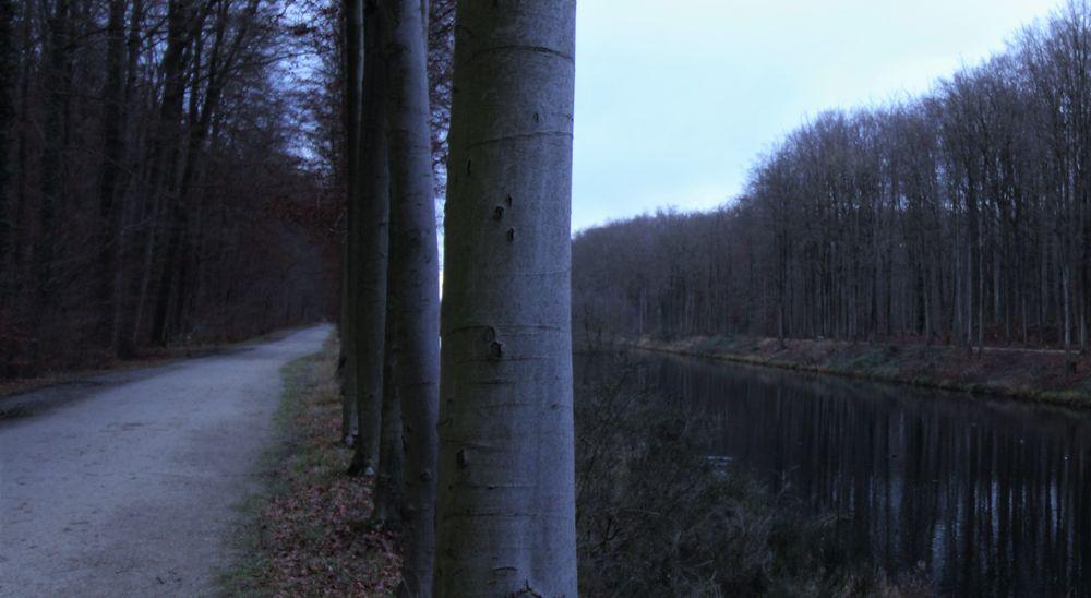 December Dyke Tervuren, Belgium