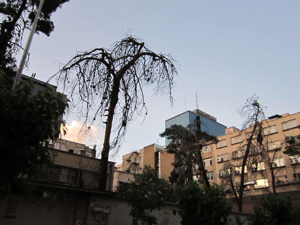 tehran-center by mohammad_kheyrkhah