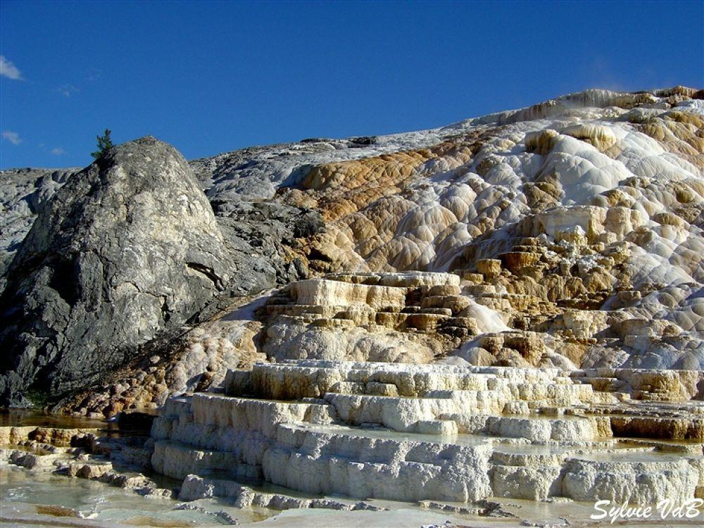 USA YellowstoneNP by sylvievdbphotography
