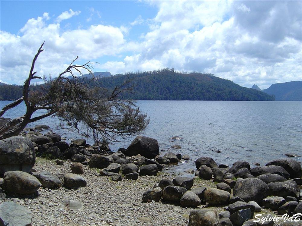 Australia Lake St Claire 2 Tasmania by sylvievdbphotography