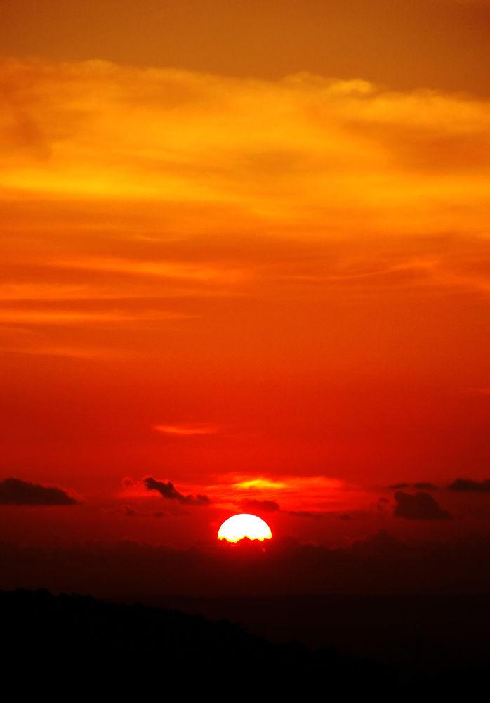 dawn by dhannie