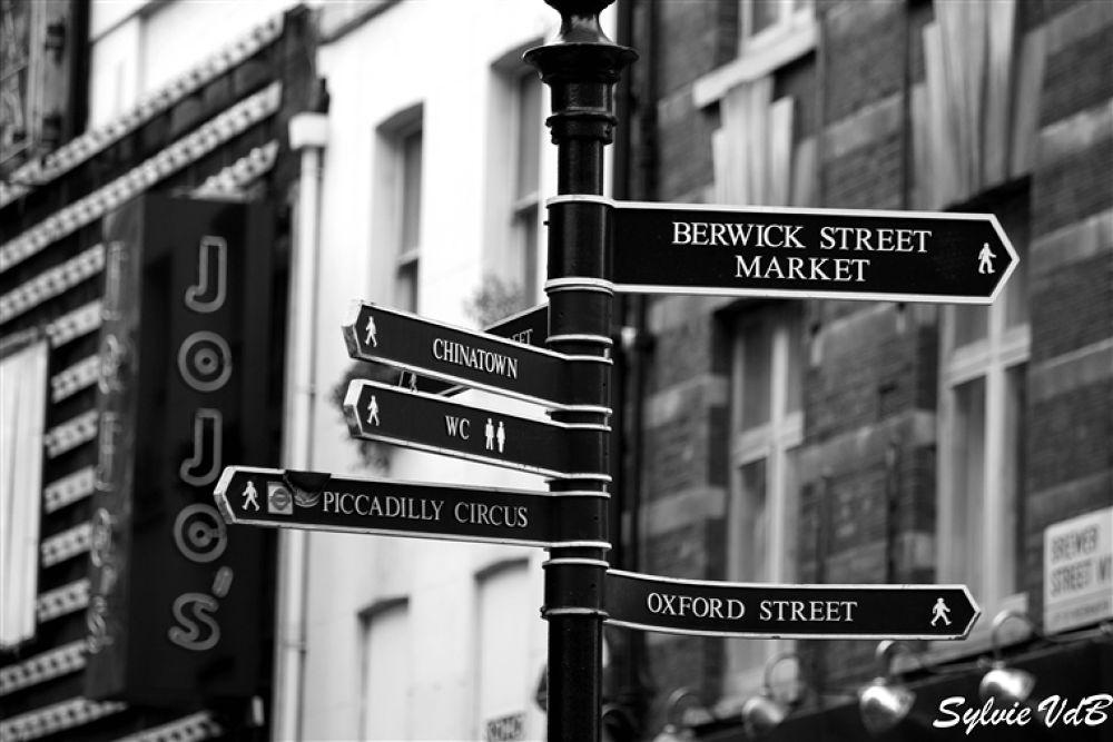 Where to go by sylvievdbphotography