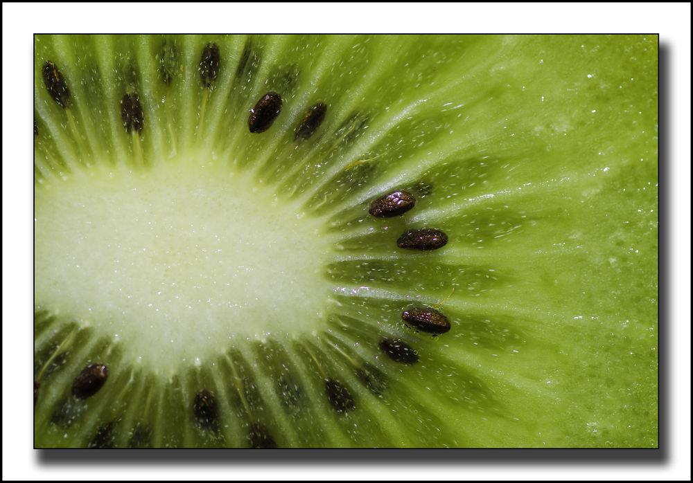 Kiwi by markst33