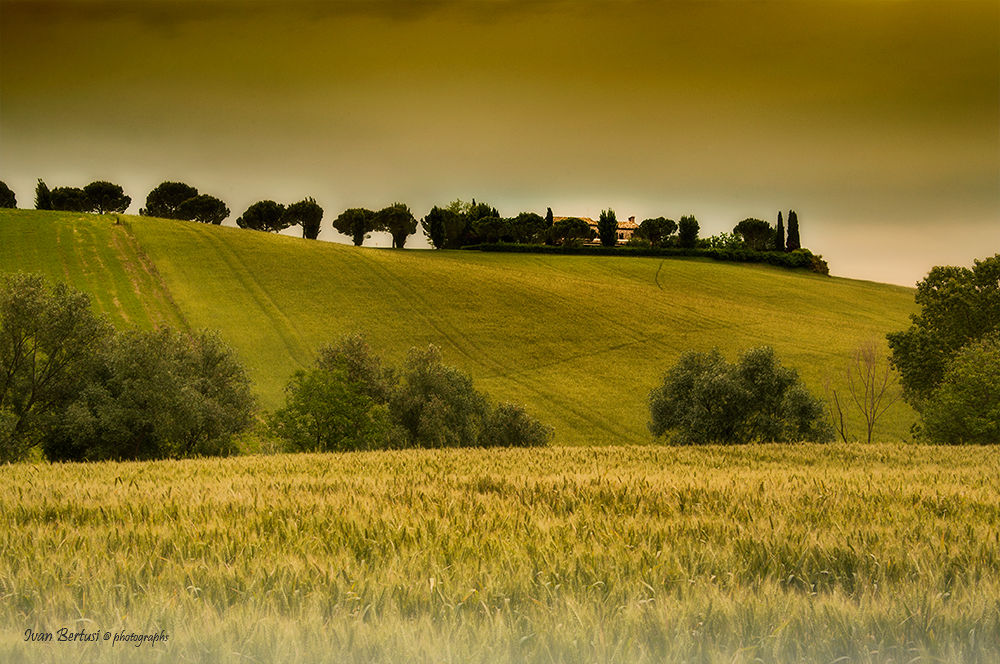 A perfect day by ivic
