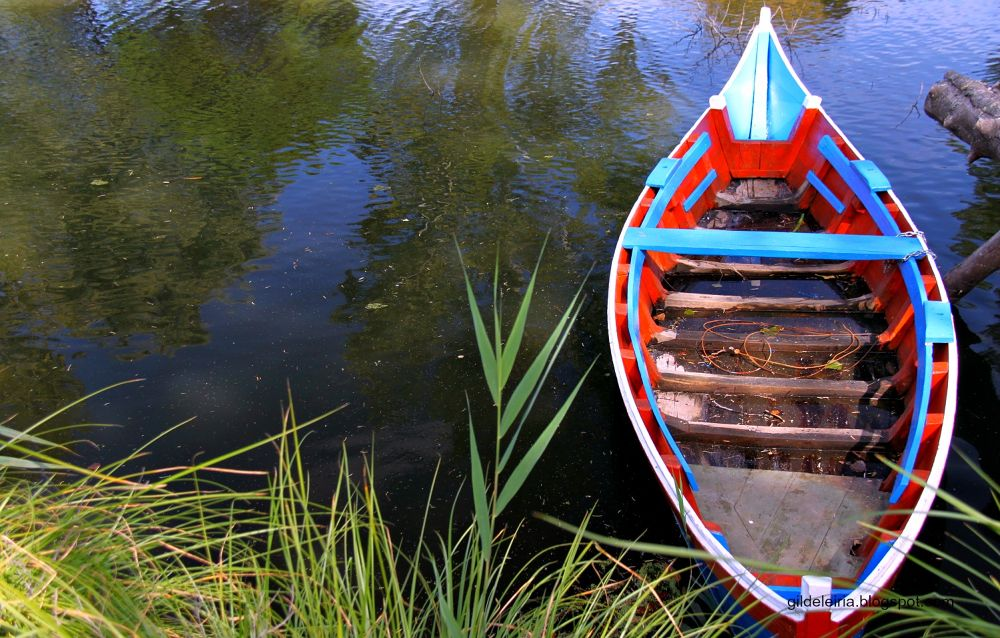 Photo in Rural #nature #boats #rivers #mira #portugal