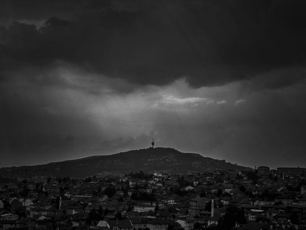 Radio-Activity by Mirza Buljusmic
