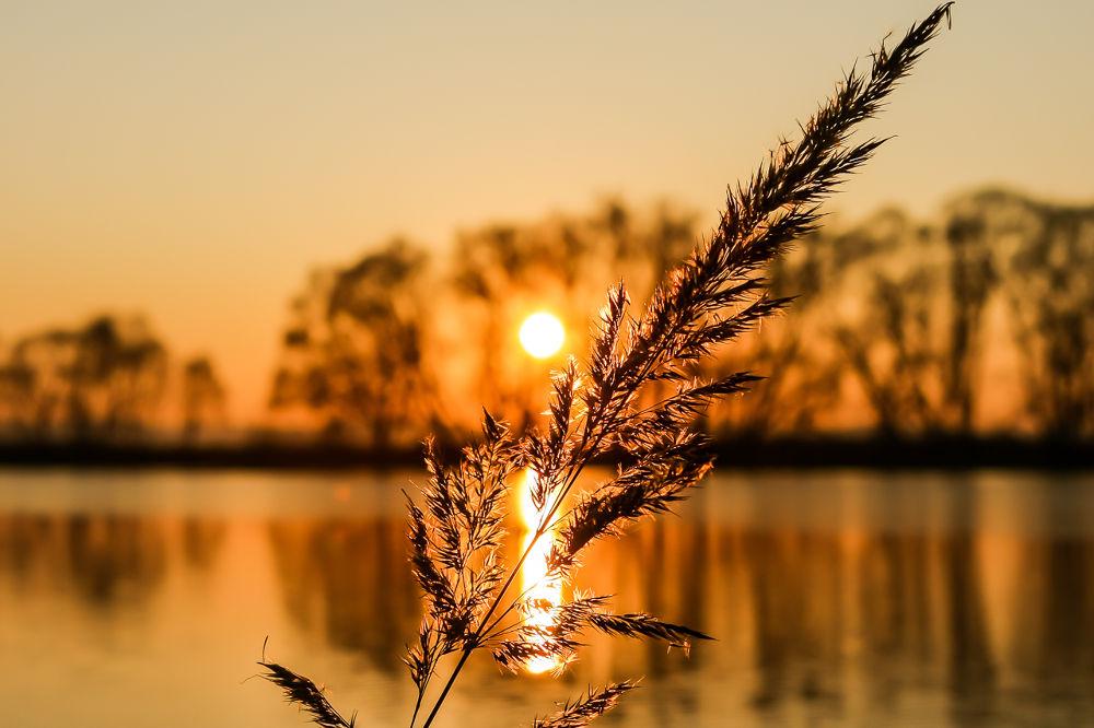 Sunset. by tibetmonk