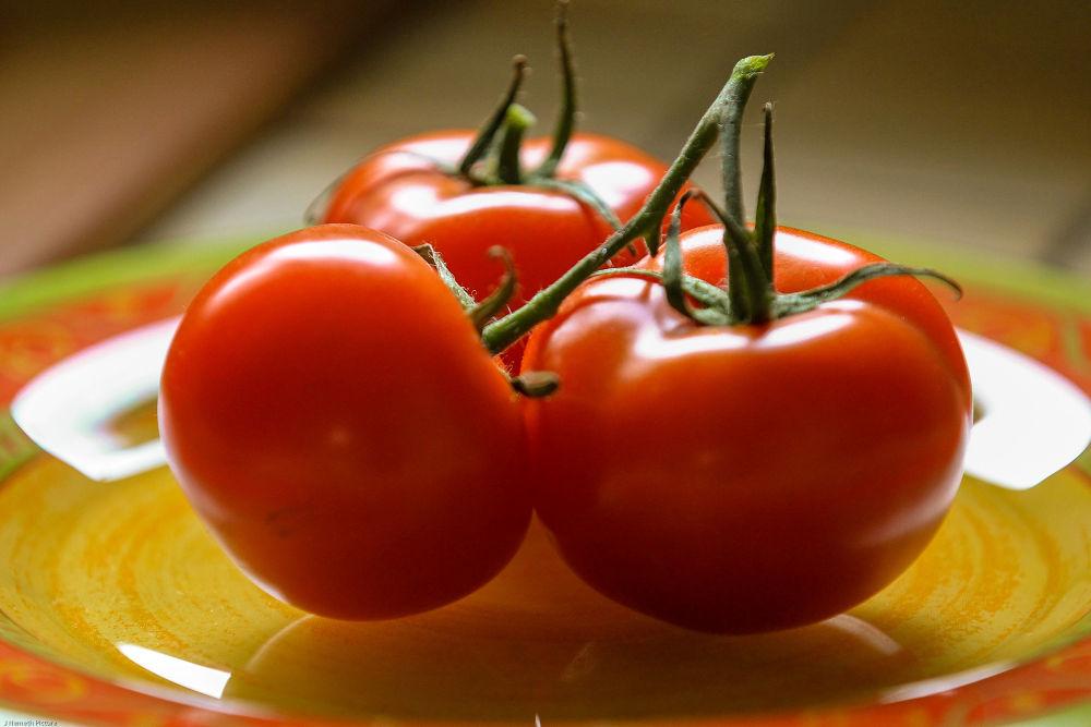 A98I3017.jpg Tomates by photosdan