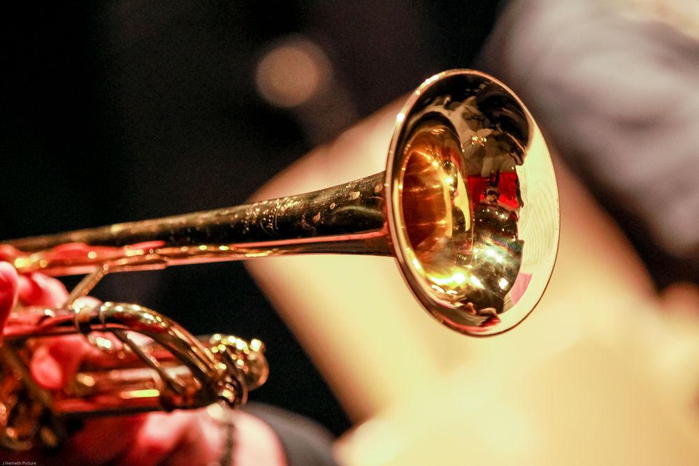 A98I3152.jpg Trompette!!!!!! by photosdan