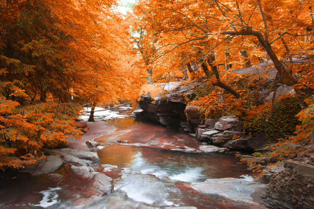 Autumn İn Bursa by serhan_ss