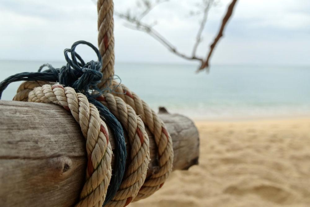 Rope Swing by Mikhail Deynekin