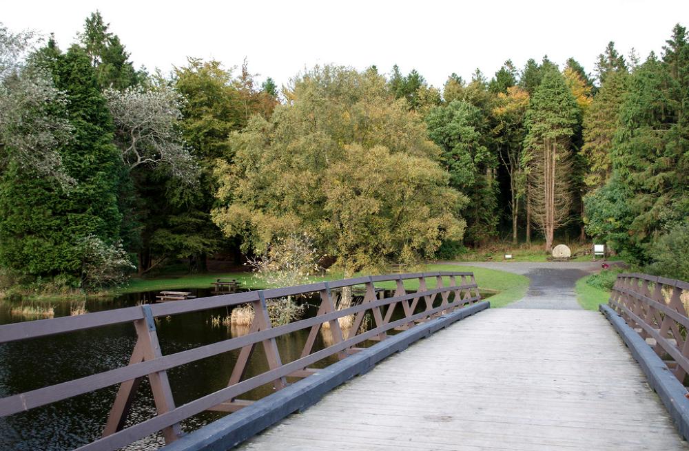 Muckno Bridge by Conorfinnegan2