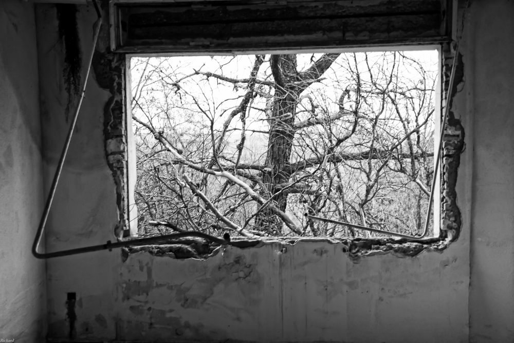 Looking out the window by Richard Thiel Sartawsky
