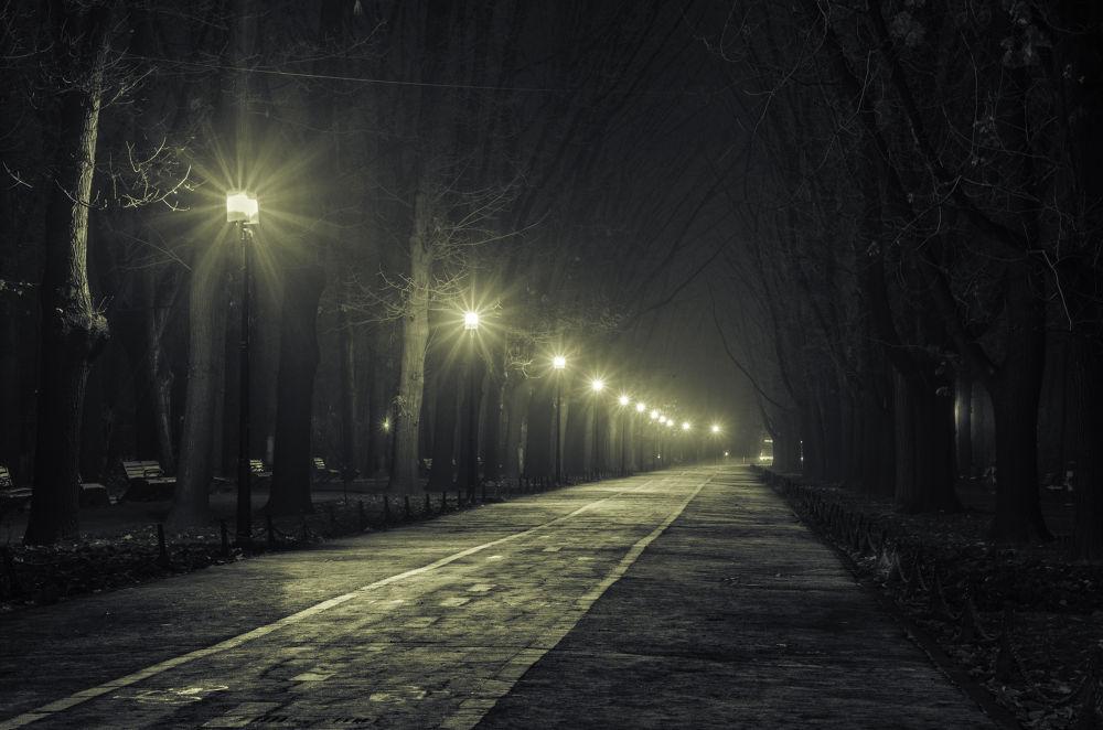 Road to infinity  by Cretu Stefan