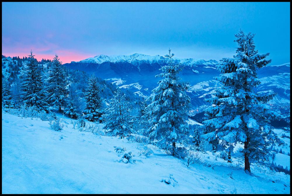 daybreak by zsoltandrasszabo