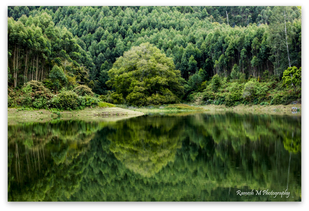 Reflection of Nature by Ramesh Muthaiyan