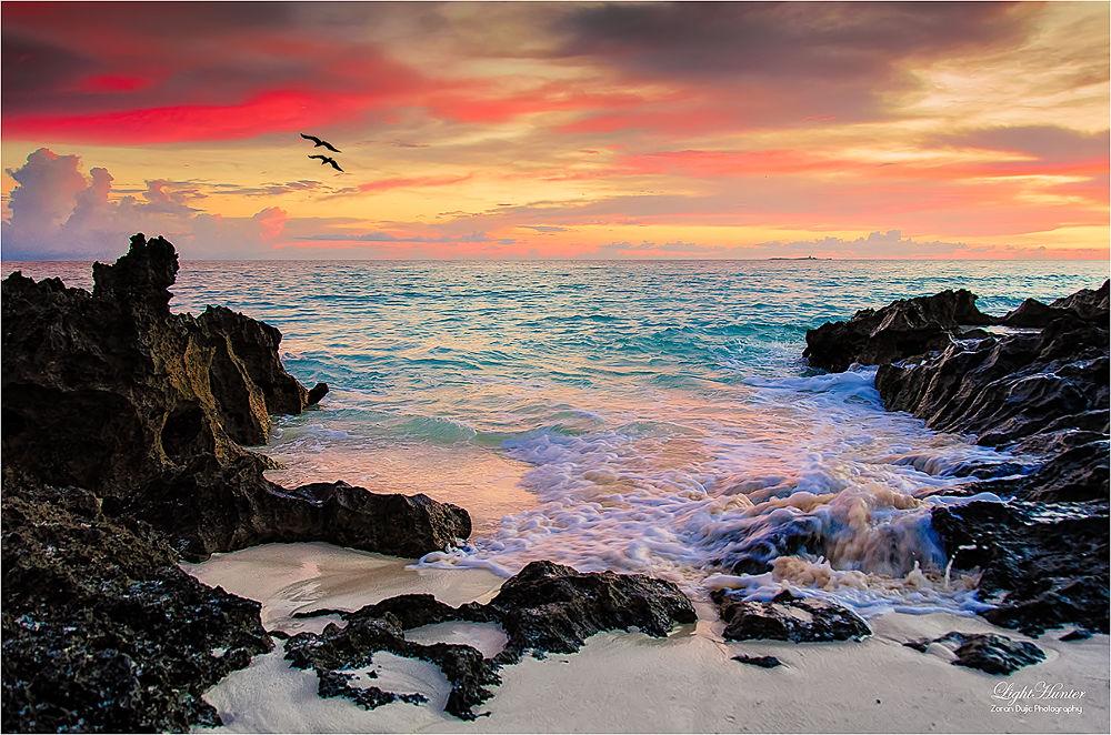 Sunrise  by Zoran Dujić - LightHunter