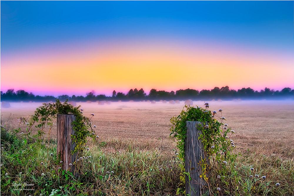 Morning lights  by Zoran Dujić - LightHunter