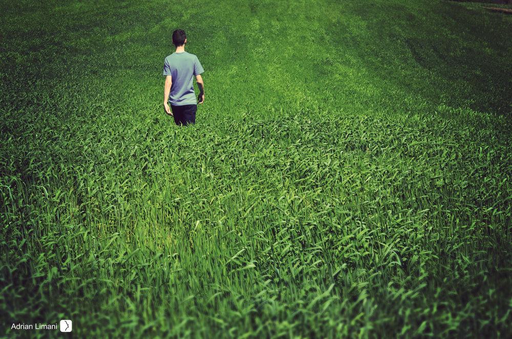 Green Walk  by Adrian Limani